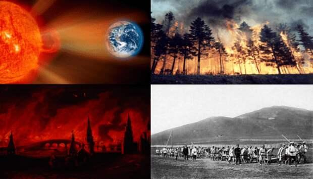 Теперь вдруг стало понятно, почему на Земле нет лесов старше 200 лет