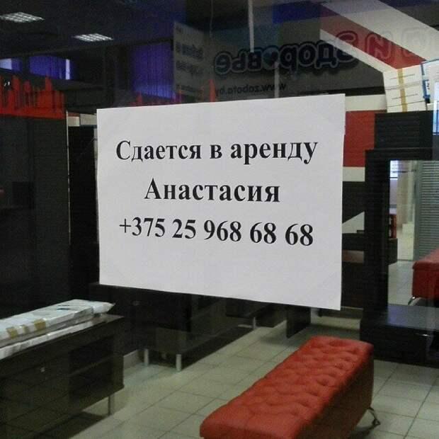 Бедная Анастасия в россии, надпись, объявления, прикол, смешно, смешные объявления, фото