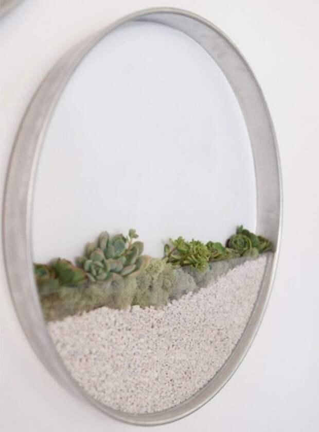 Оригинальные настенные кашпо для воздушных растений (3 фото)
