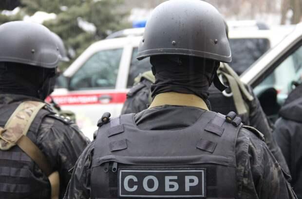 Спецоперация позадержанию украинских «наркобаронов» вРоссии: впечатляющие кадры (ВИДЕО)