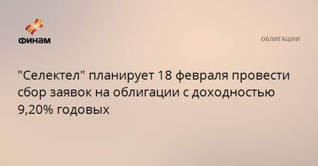 """""""Селектел"""" планирует 18 февраля провести сбор заявок на облигации с доходностью 9,20% годовых"""