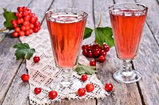 Калина настойка, рецепты настоек, настойки +на спирту,