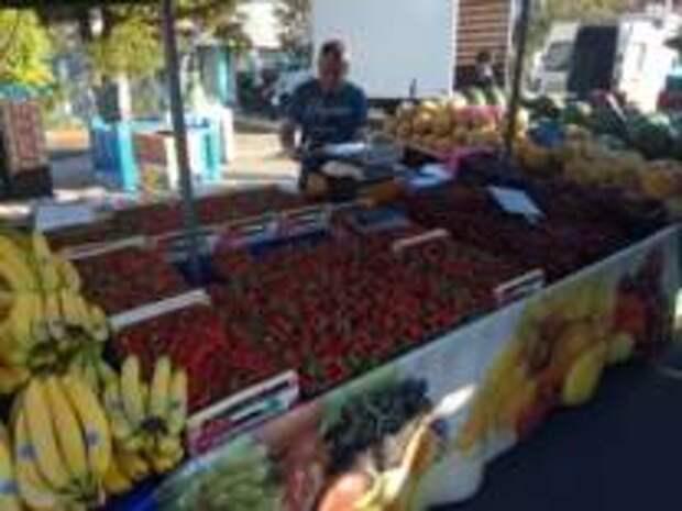 Где выгоднее всего покупать продукты в Греции самостоятельному туристу – советы бывалых