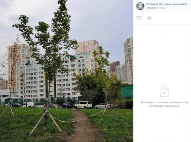 Асфальтированная дорожка на Дегунинской может появиться в следующем году