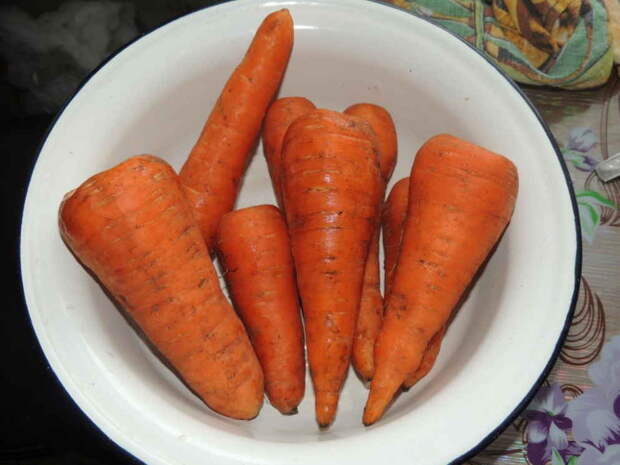 Морковь и изюм против камней в почках. Рецепт старого травника