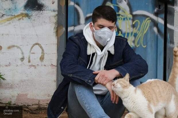 В Украине выявлено еще 6677 случаев заражения коронавирусом
