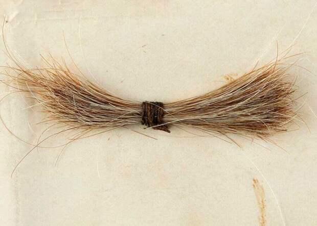 В США продали прядь волос Линкольна за 81 тысячу долларов