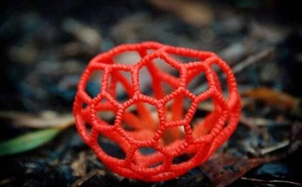 15. Решеточник красный / Clathrus ruber грибы, факты, это интересно