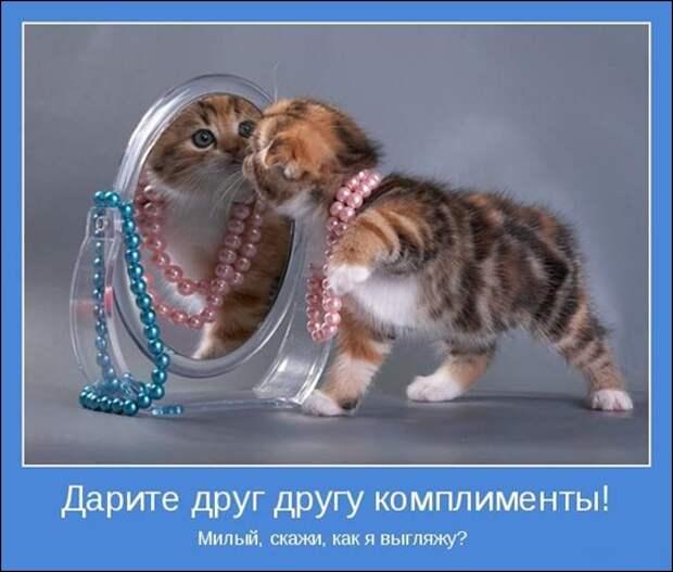 72560920_Kak_ya_vuyglyazhu