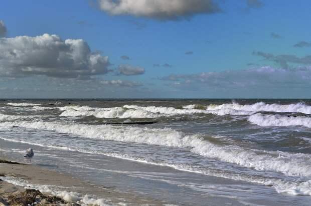 Focus (Германия): «Северный поток — 2» будет достроен