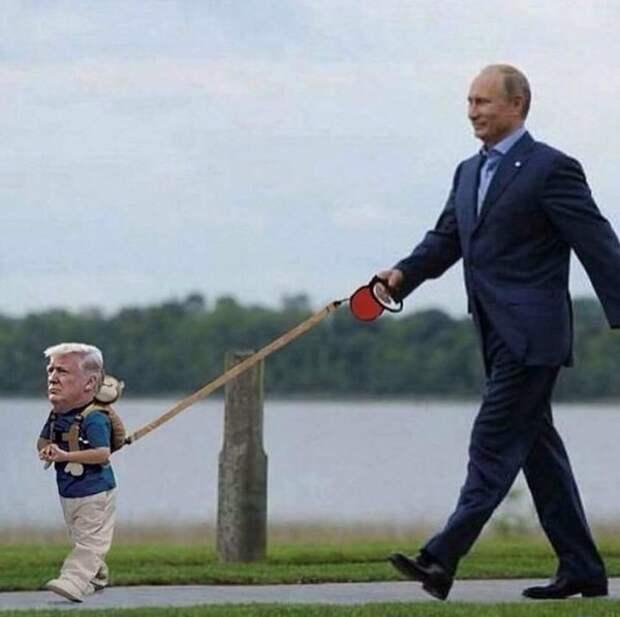 Карикатура на Трампа с участием президента России