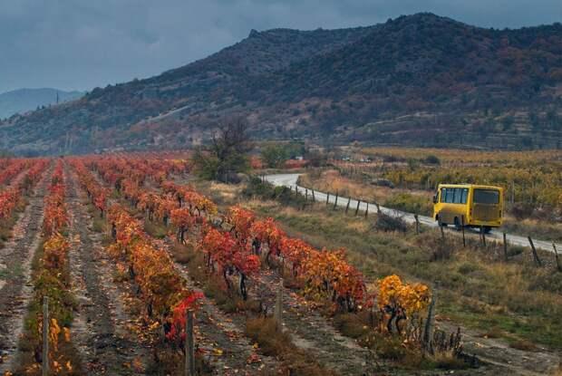 5 причин почему бизнес в Крыму проваливается