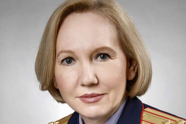 СК назвал причастных к провокациям в ходе «Бессмертного полка»