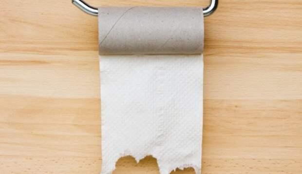Великий Спор о Туалетной Бумаге — через верх или через низ? (6 аргументов)