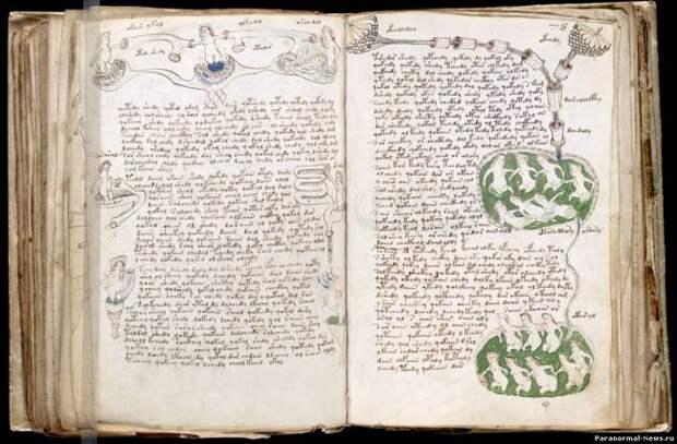 Рукопись Войнича расшифрована?