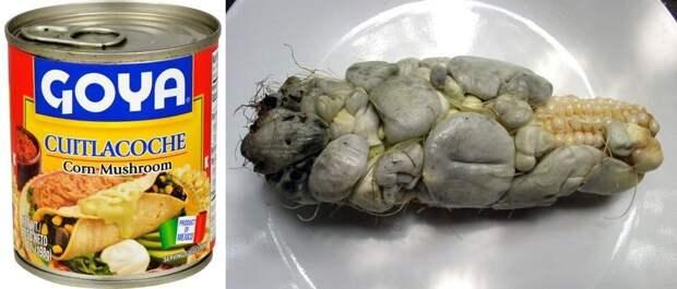 Кузнечики, аллигатор, хлеб и… кукурузный грибок: самые безумные консервы