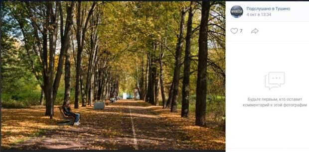 Фото дня: листья желтые над Тушиным кружатся