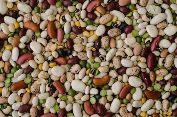 Бобовые - источник белка и калорий долгого хранения.