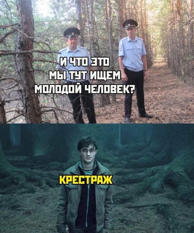 Мемы и смешные картинки