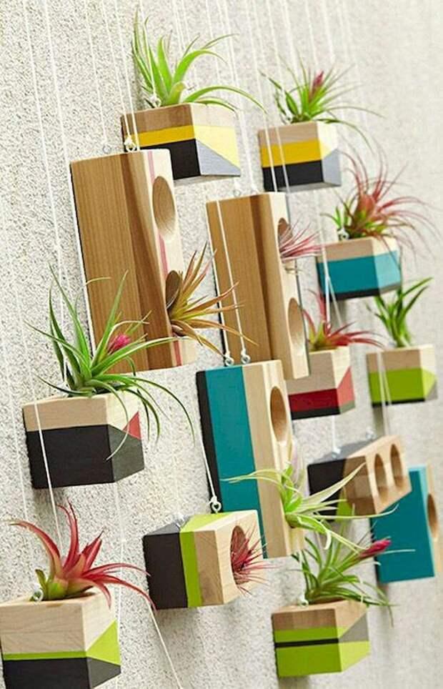 Цветники на стене (подборка)