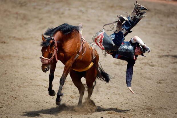Американский ковбой падает с лошади