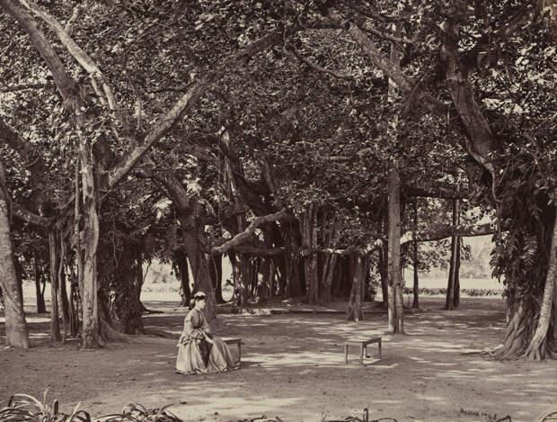 Albom fotografii indiiskoi arhitektury vzgliadov liudei 78