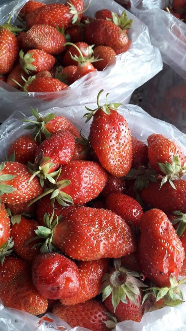 Как я ягоду продавала