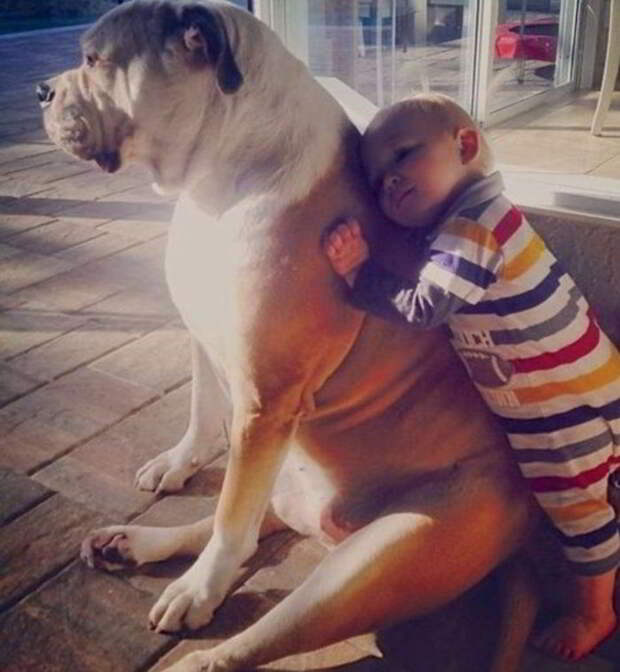 Фотографии, доказывающие, что каждый ребенок должен иметь домашнее животное