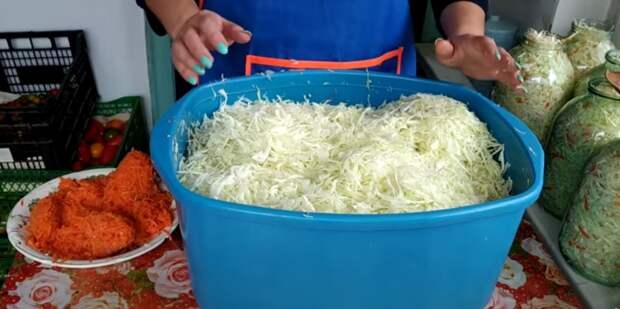 По каким дням нужно квасить капусту. Наш семейный рецепт