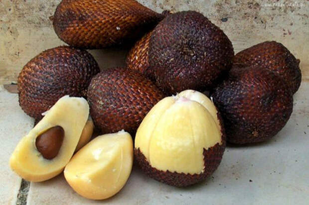 Змеиный фрукт еда, фрукты, экзотика