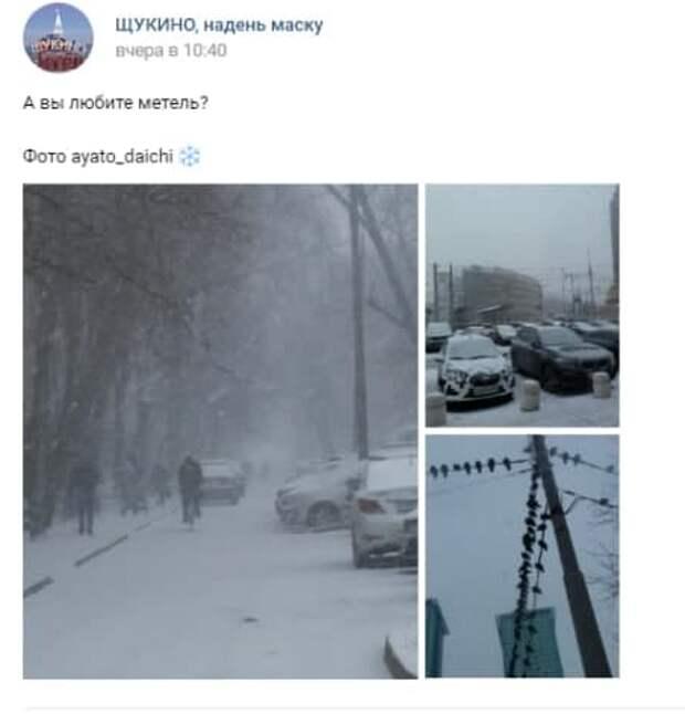 Фото дня: предновогодняя метель в Щукине