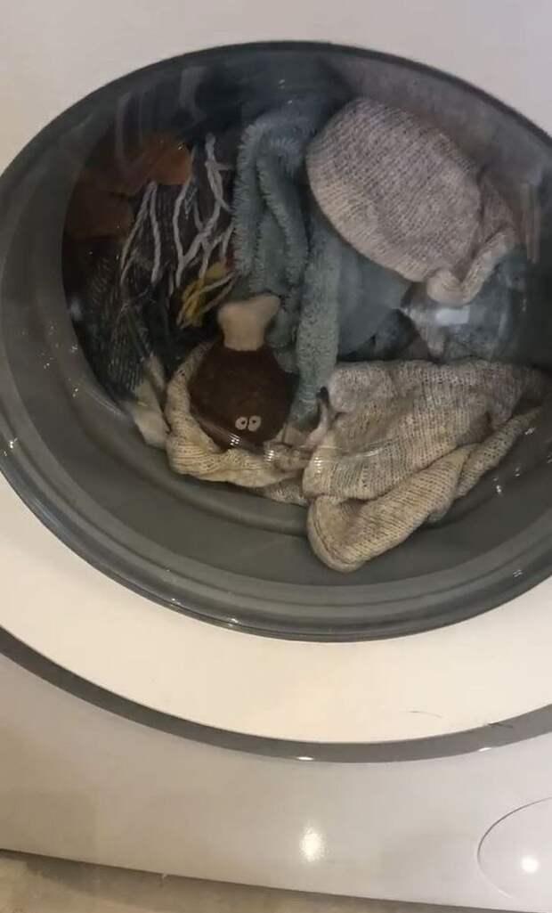 Трехлетняя такса целый час жалобно скулила, пока ее любимую плюшевую косточку стирали в машинке