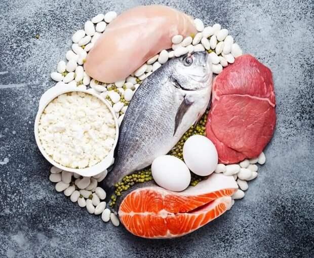 Что происходит с организмом при недостатке белка?