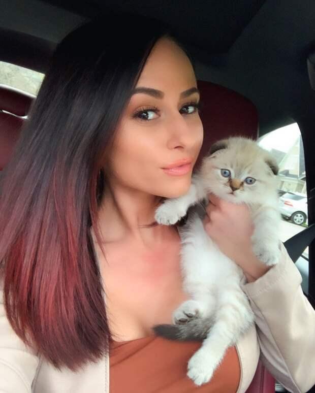 9-летний рыжик Мило впал в депрессию, и хозяйка решила завести ему котёнка. Их встреча изменила жизнь кота