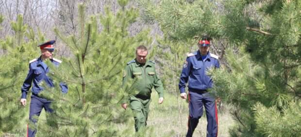 Более 11млн рублей потратят наустановку камер влесах Ростовской области