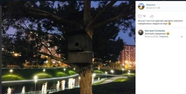 Фото дня: элитный скворечник с видом на  парк