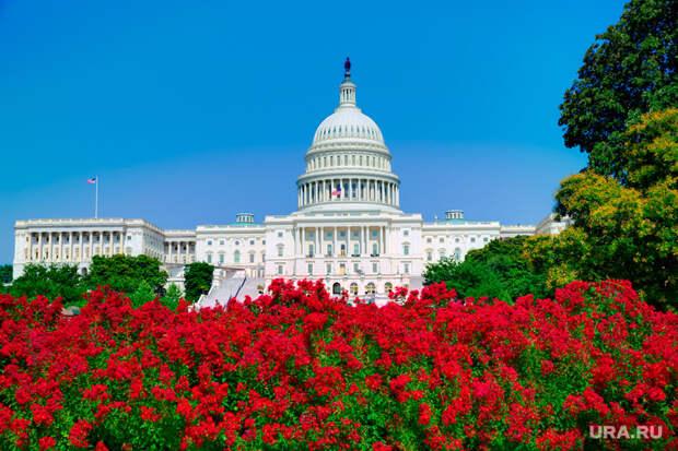 США, комета,метеор,сирия, правительство, капитолий, красные цветы