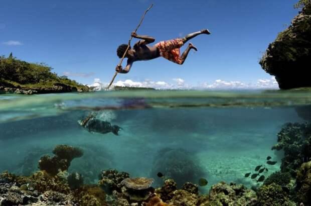 Что скрывается под водой: 34 невероятные фотографии