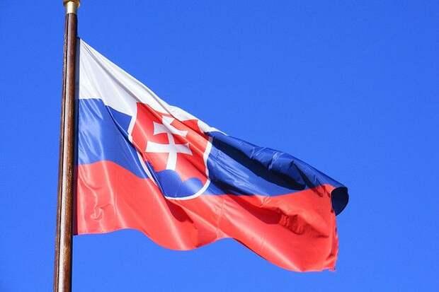 В Словакии парламент выразил доверие новому правительству