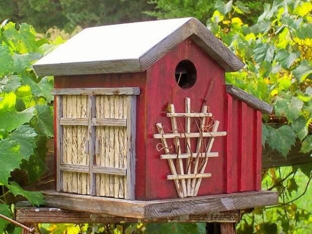 62 абсолютно фантастических скворечника, которые сделают ваш участок приютом для птиц