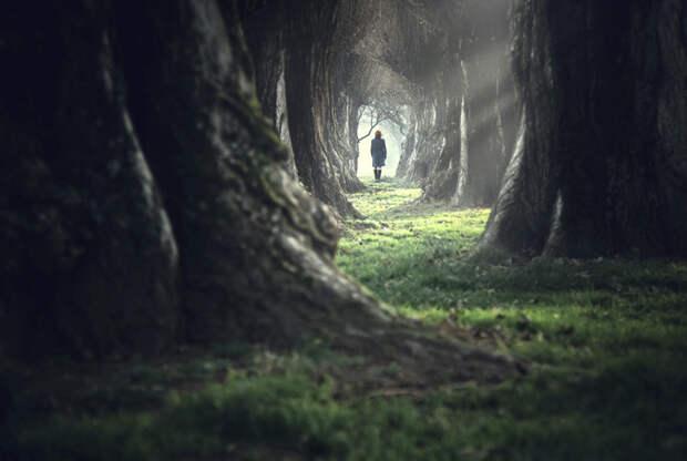 Реинкарнация - это миф или реальность?