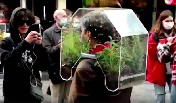 Видео дня: бельгиец защитился от ковида с помощью оранжереи на голове