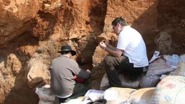 Ученые из США определили время самого крупного вымирания в истории Земли
