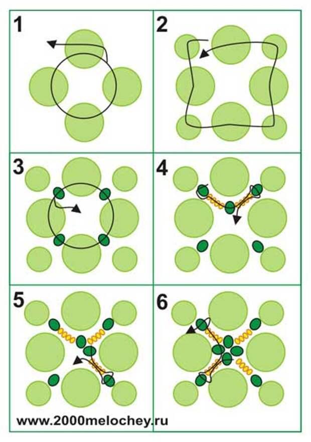 Схема игрушки-черепахи из бисера