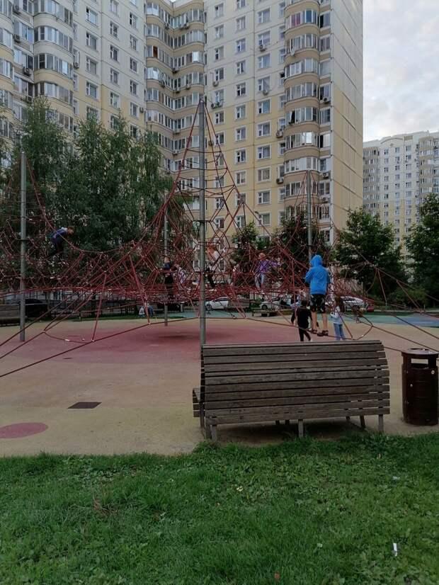 Фото дня: на детской площадке на Большой Марфинской дети освоили «Паутинку»