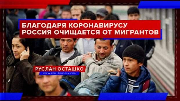 Благодаря коронавирусу Россия очищается от мигрантов