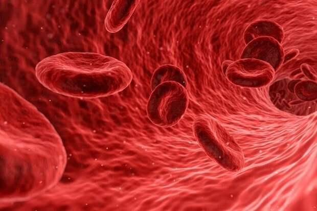 Заболевания, которые грозят вам по группе крови
