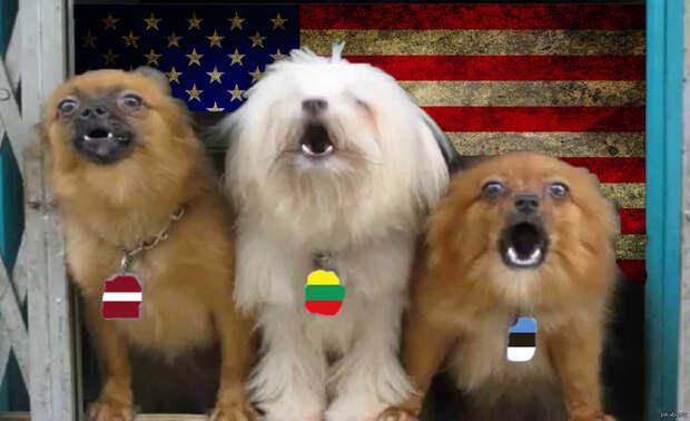 Ларёк с протухшими шпротами опять воздух испортил: Литва призвала Запад подготовиться к непризнанию Союзного государства РФ и Белоруссии
