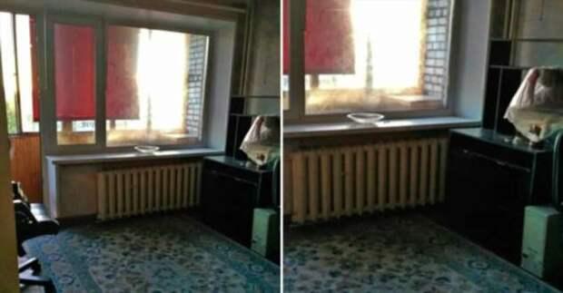 Родители сделали для дочери ремонт в однушке, а она назвала его «пенсионерским»