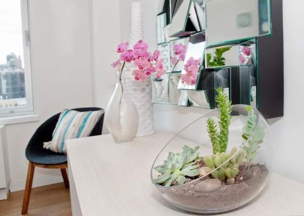 Растениям нужен покой. /Фото: interiors.in.ua.